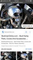 Skull air cleaner cover